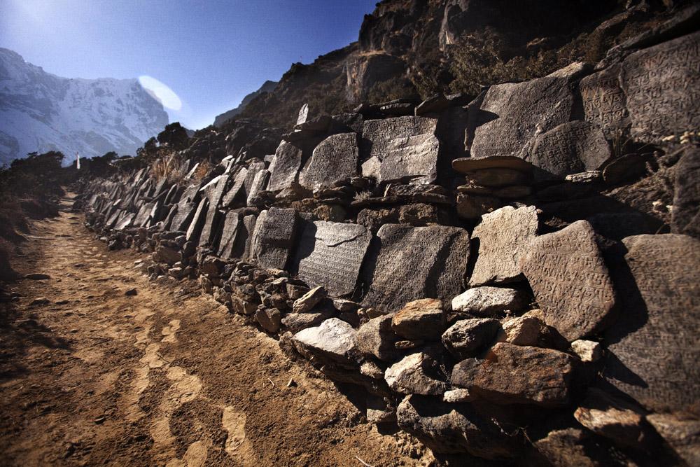 Reportage | Losan Piatti - Fotografo Toscana_Everest_Caravan Yak_09