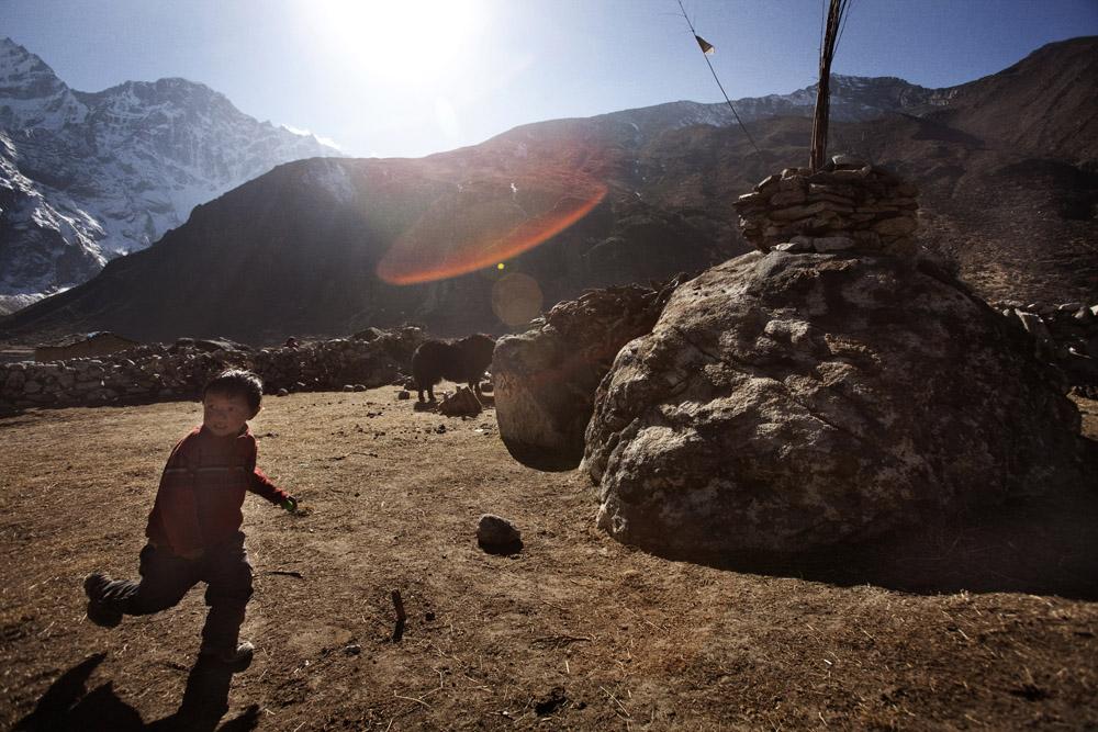 Reportage | Losan Piatti - Fotografo Toscana_Everest_Caravan Yak_21
