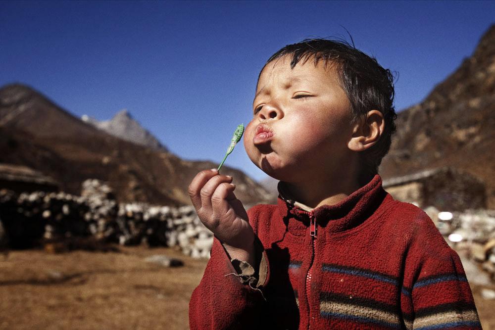 Reportage | Losan Piatti - Fotografo Toscana_Everest_Caravan Yak_22